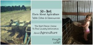 Best Facts About Agriculture