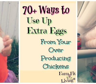 70+ Ways to Use Up Extra Eggs From Over Producing Chickens