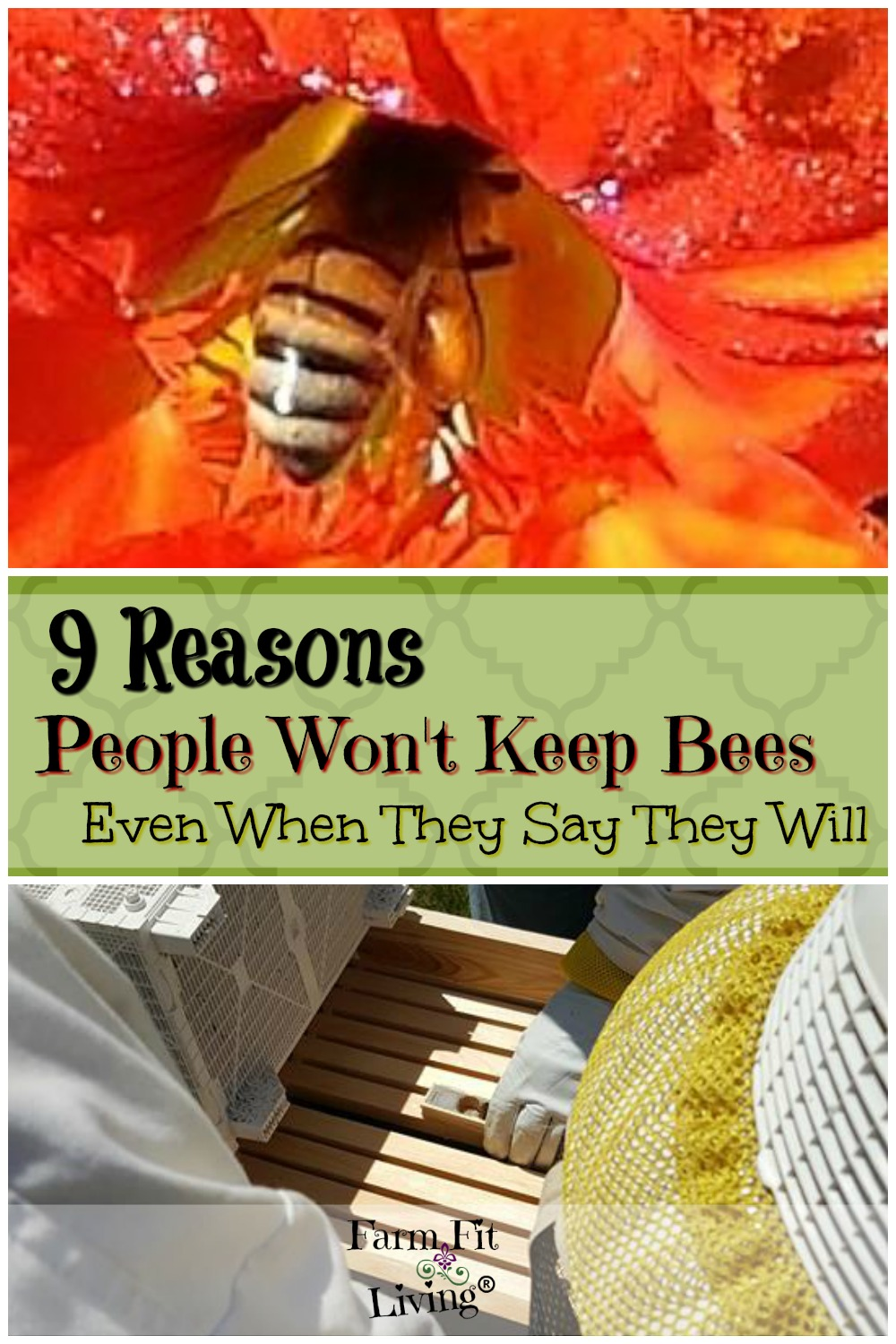 9 Reasons People Won't Keep Bees Even If They Say They Will