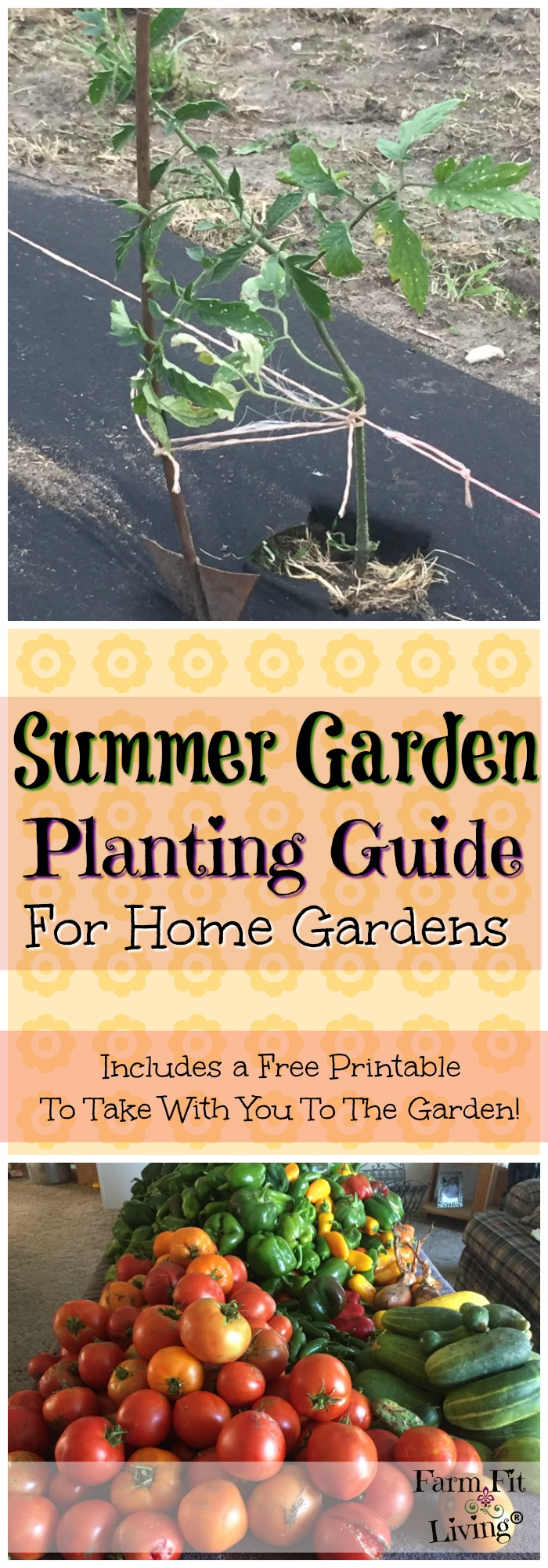 This summer garden planting guide will help you plant summer garden crops, such as tomatoes, peppers and watermelon? FREE printable included.