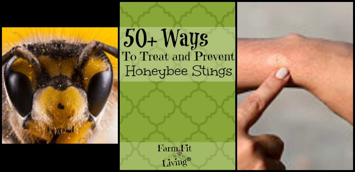 ways to treat honeybee stings