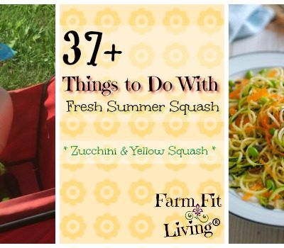 37+ Things to Do With All That Summer Squash