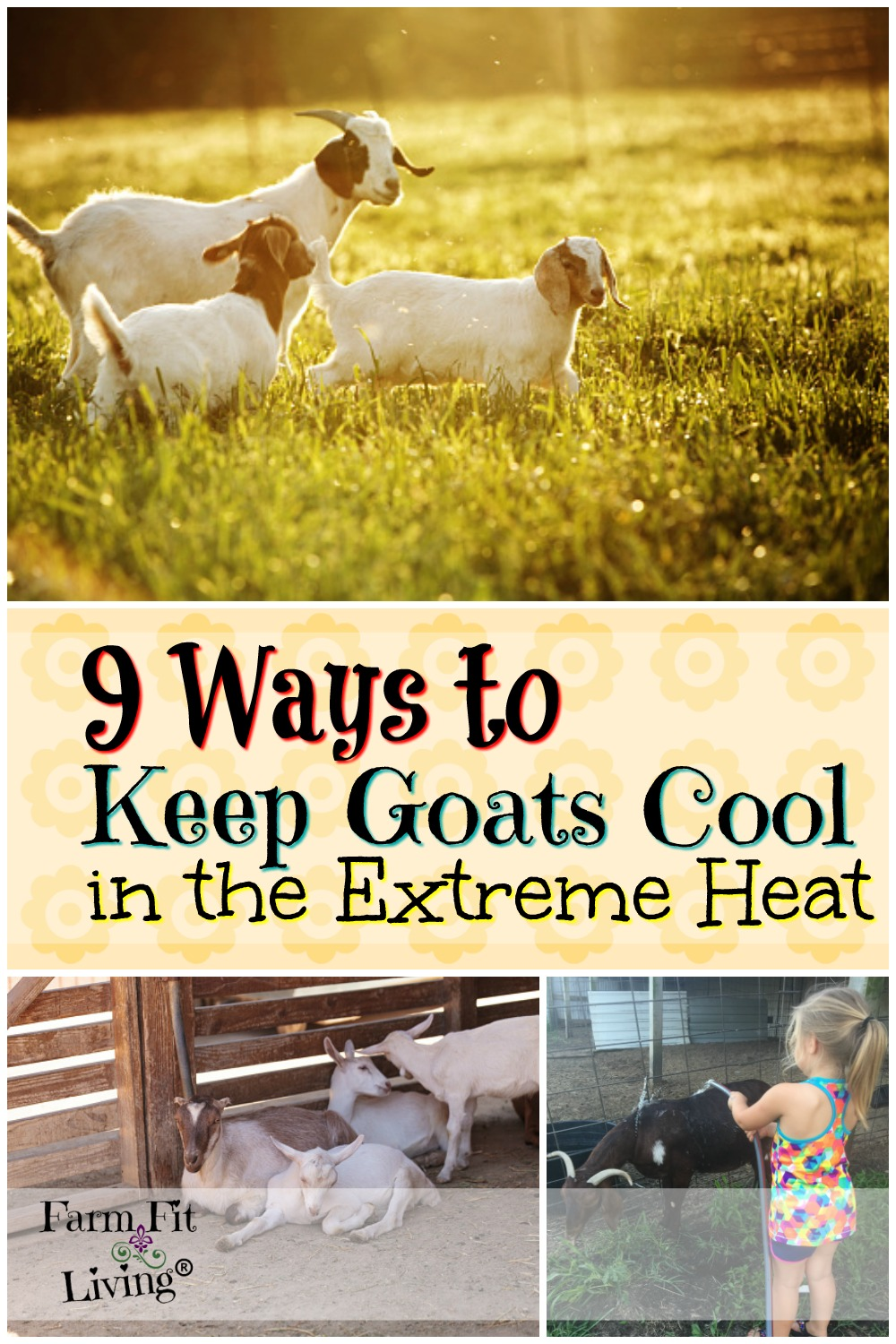 ways to keep goats cool