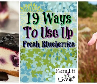 19 Ways to Use Up Fresh Blueberries Before They Go Bad