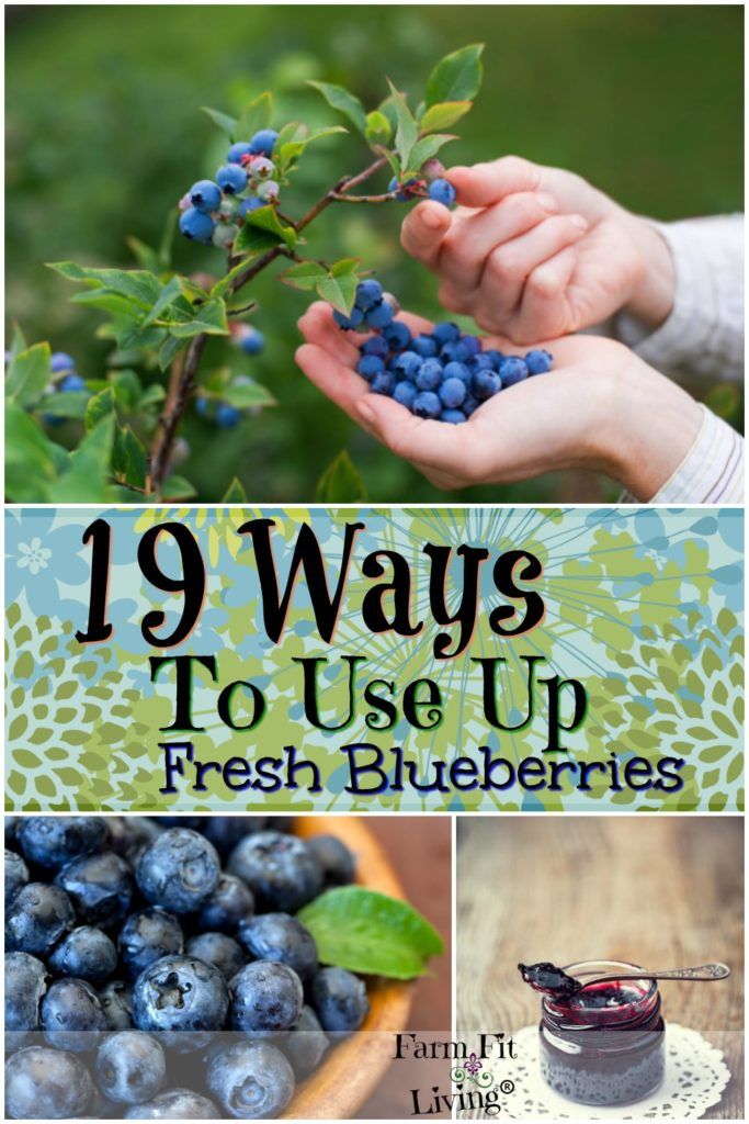 ways to use up fresh blueberries
