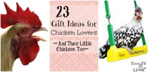 Gift ideas for chicken lovers