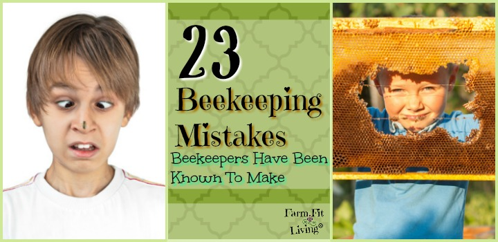 beekeeping mistakes