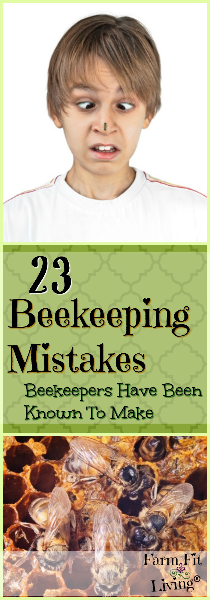 The best beekeepers have learned from their own beekeeping mistakes. Here are 23 categories of the most common mistakes that beekeepers have been known to make.