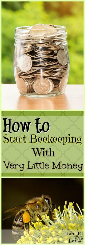 start beekeeping with very little money
