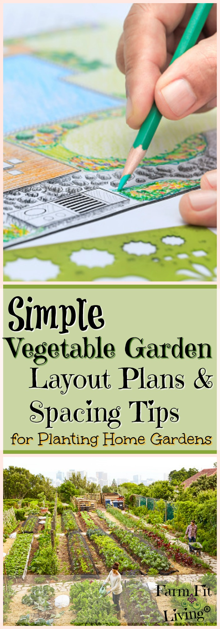 Are you looking for more simple vegetable garden layout plans and spacing tips to maximize efficiency in your home garden space?