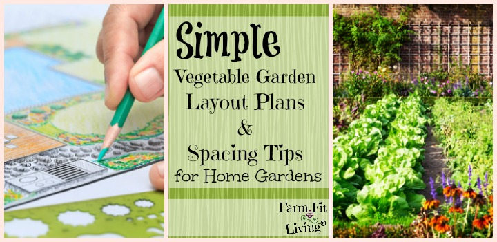 simple vegetable garden layout plants and spacing