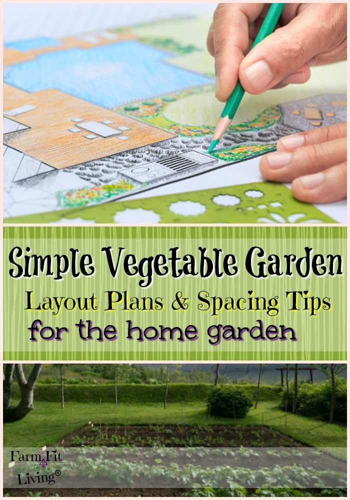 simple vegetable garden layout plans and spacing