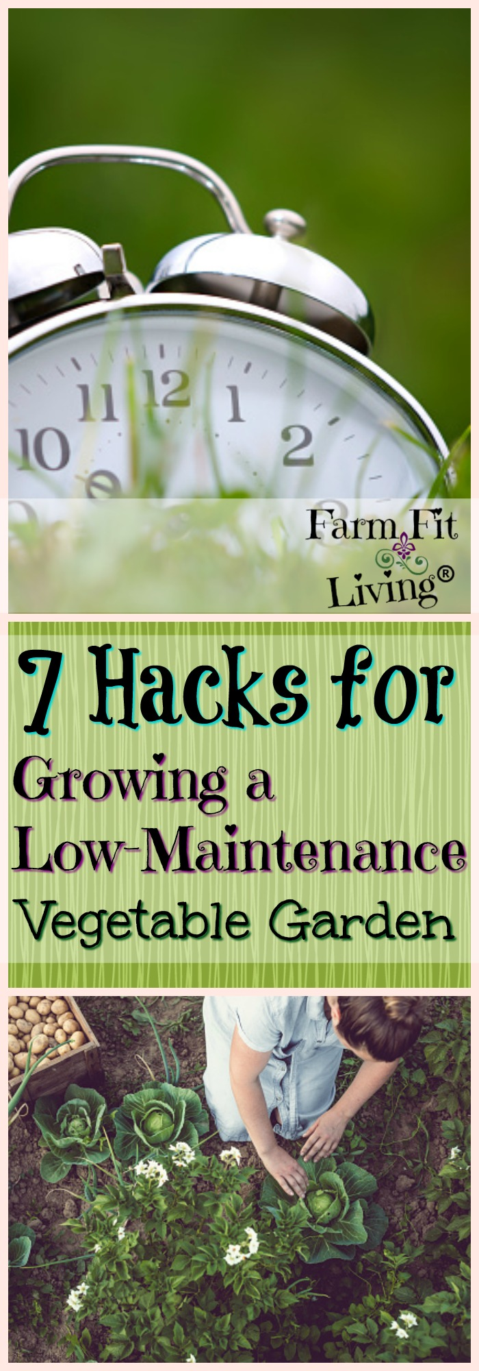 Do you feel like you're too busy to grow a successful garden? Here's 7 hacks for growing a low-maintenance vegetable garden that might help you find success. #vegetablegarden #gardenhacks