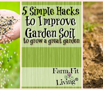 5 Simple Hacks to Improve Garden Soil to Grow a Great Garden