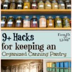 9+ Hacks for Keeping an Organized Canning Pantry