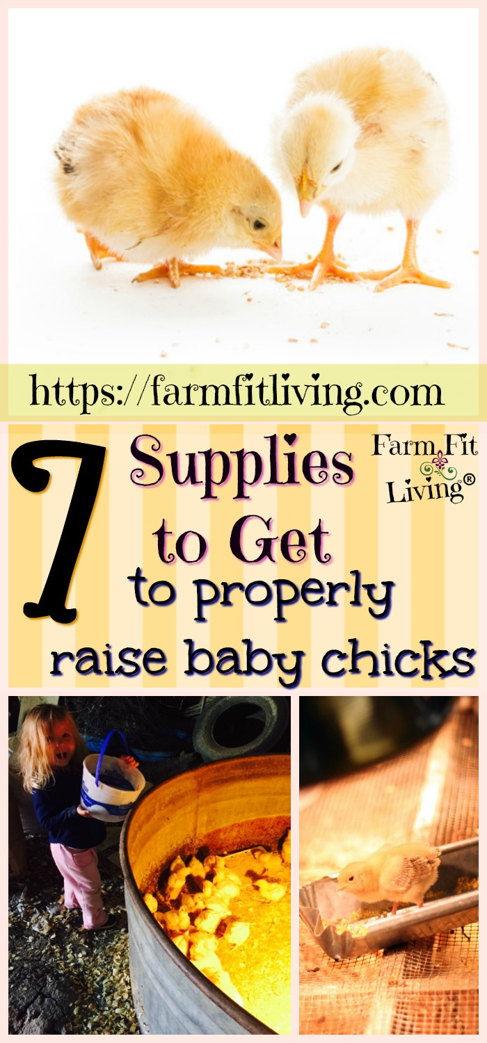 Are you wanting to start some baby chicks but don't know what you need? Here's my list of 7 supplies to get to properly raise baby chicks that are healthy and vibrant.