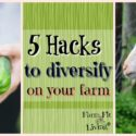 5 Hacks to Diversify on the Farm or in your Backyard Business