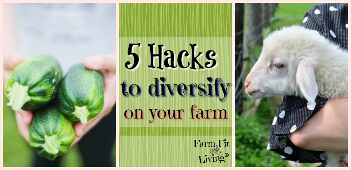 hacks to diversify on the farm