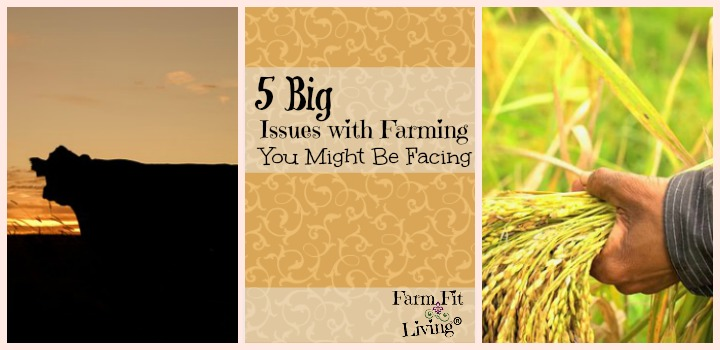 big issues with farming you might be facing
