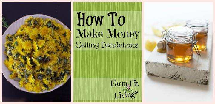 Make Money Selling Dandelions
