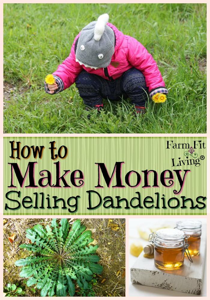 Make Money Selling Dandelions