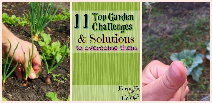 Top Garden Challenges