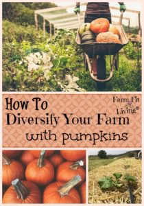 Diversify Your Farm With Pumpkins