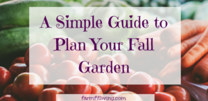 A Simple Guide to Plan Your Fall Garden