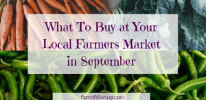 What to Buy at the Farmers Market in September