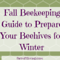 Fall Beekeeping Guide to Prepare Your Beehives for Winter