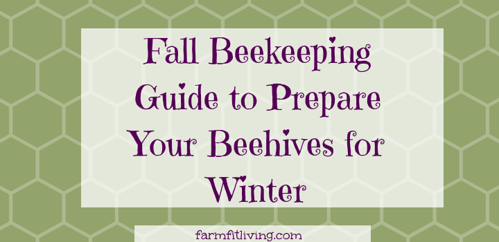 Fall Beekeeping Guide