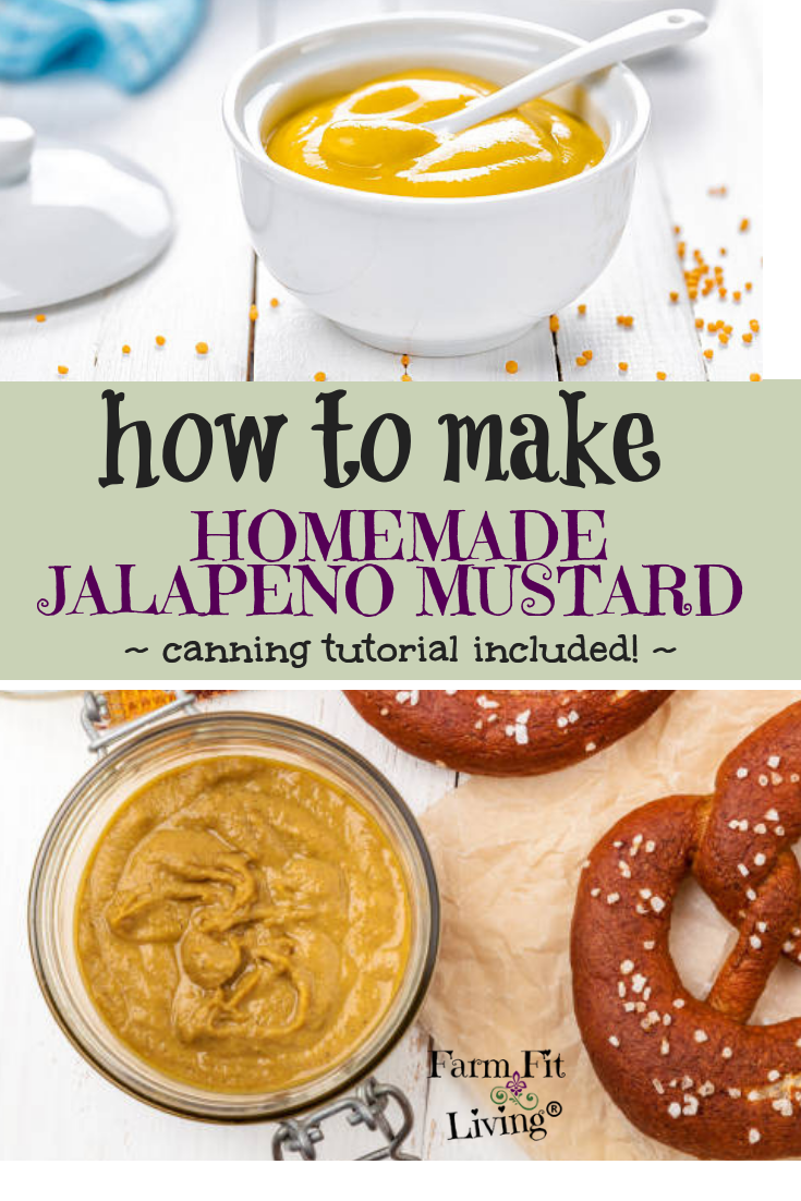 If you're looking for a yummy new condiment to make and try, this yummy homemade jalapeno mustard recipe will be your new best friend! Canning tutorial included!