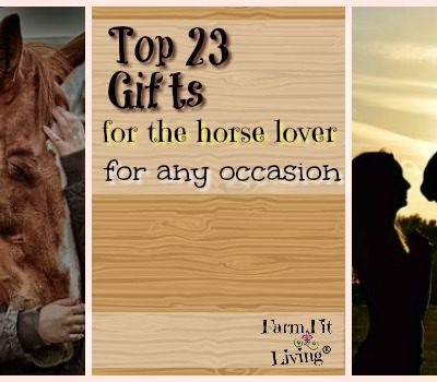 23 Top Gifts for Horse Lovers for Any Occasion