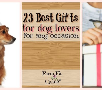 23 Top Gifts for Dog Lovers & Dogs for Any Occasion