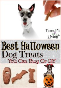 Best Halloween Dog Treats
