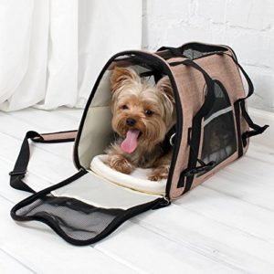 Top Gifts for the Dog Lover