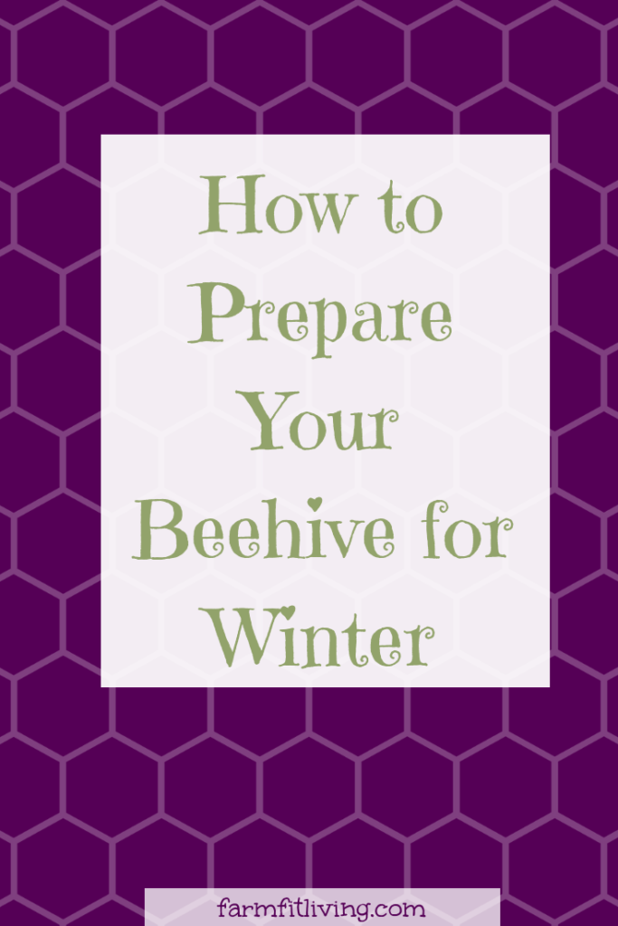 prepare your beehive for winter