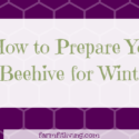 How to Prepare Your Beehive for Winter