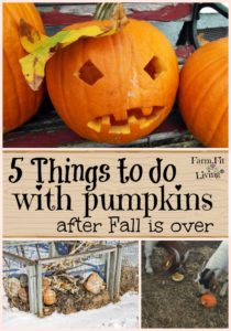 things to do with pumpkins after fall is over