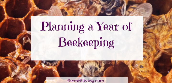 planning a year of beekeeping