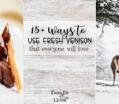 15+ Ways to Use Venison that Everyone Will Love