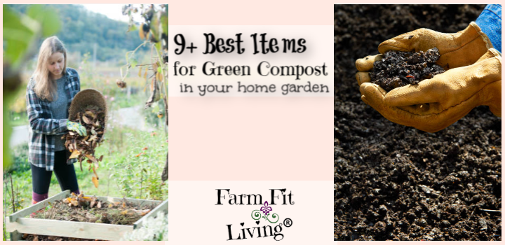 9+ Best Items for Green Compost in your Home Garden