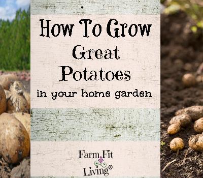 Grow Great Potatoes in your Home Garden