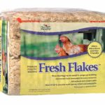 must-have chicken supplies list for a happy flock