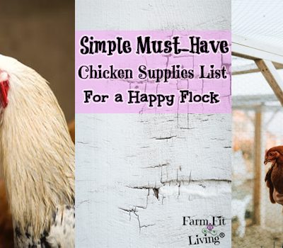 Simple Must-Have Chicken Supplies List For a Happy Flock