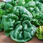 How to Grow Great Spinach