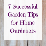 7 Successful Garden Tips