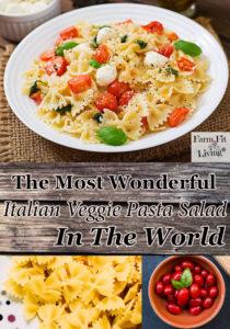 the best wonderful Italian veggie past salad in the world.