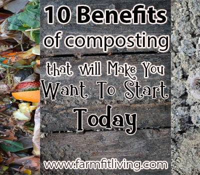 10 Benefits of Composting that will Make You Want To Start Today
