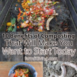 10 Benefits of Composting